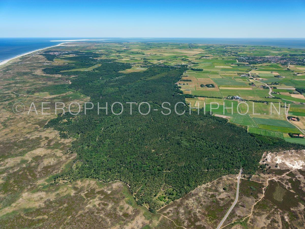 luchtfoto |  Texel, Texelse Bos, De Dennen, Nationaal Park Duinen van Texel.  In de 19e eeuw werd besloten de mientgronden rendabeler te maken door de aanleg van weiland en vooral productiebos.  opn. 01/07/2018